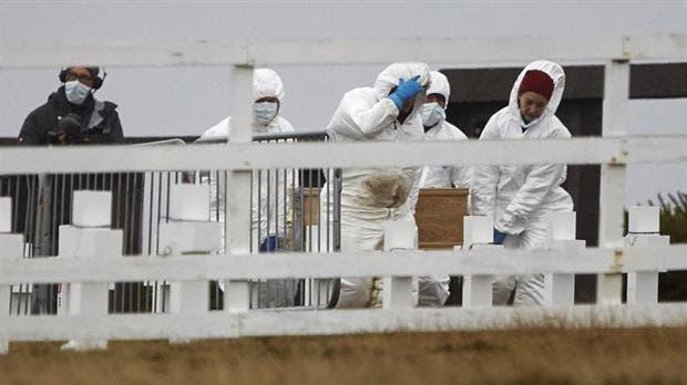 Malvinas: rescataron el ADN de 121 soldados caídos