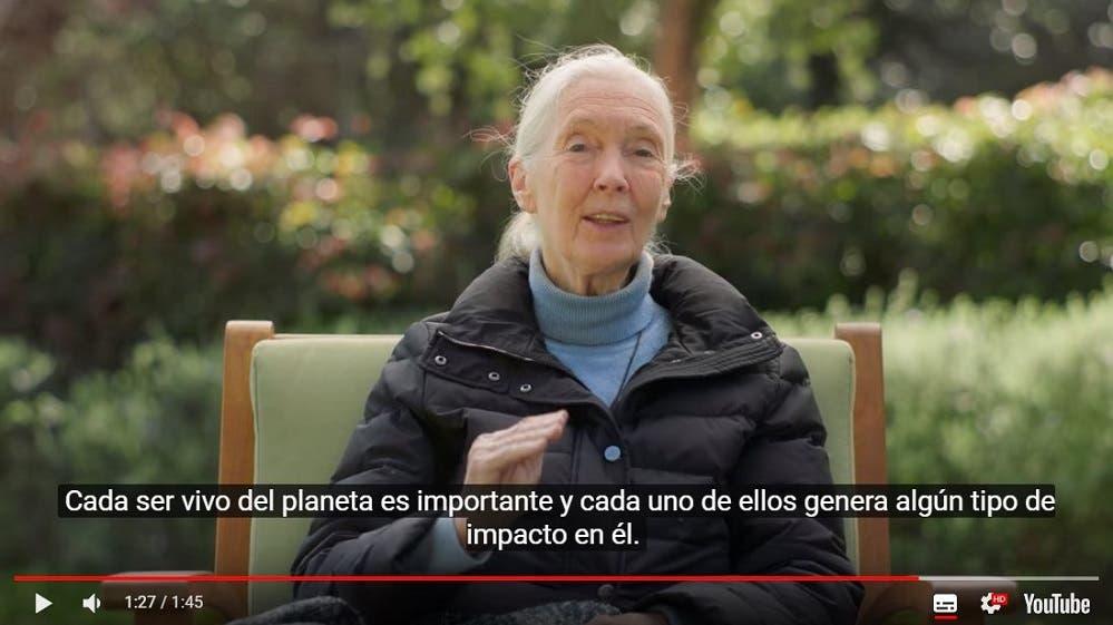 Google conmemora el Día de la Tierra con homenaje