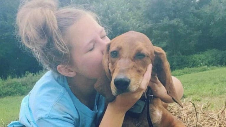 Una nena quiso salvar a su perro, la atropellaron y ambos murieron