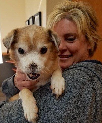 El perro sin nariz que busca una nueva familia — Sniffles