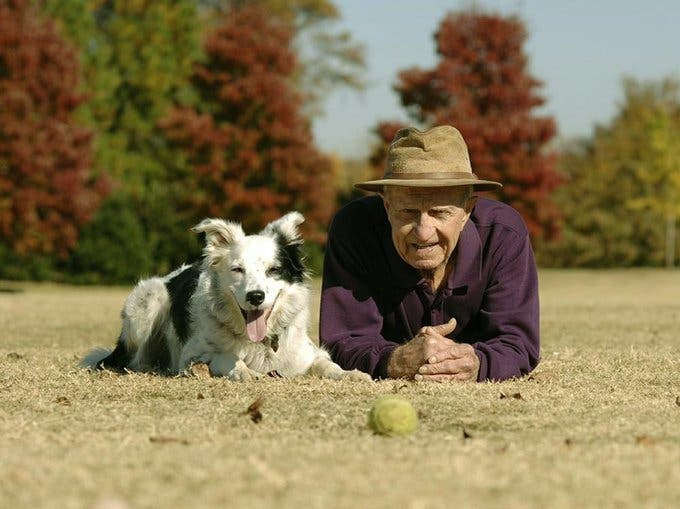 Murió Chaser, la perrita más lista del mundo; sabía mil sustantivos