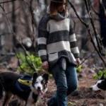 Tres perros están resucitando un bosque incendiado