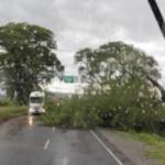 La tormenta convirtió en ríos las calles de varias localidades del este tucumano