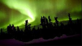[Imagen: size2_4660_aurora_3.jpg]