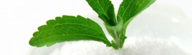 Las 7 diferencias entre la stevia y el azúcar refinado