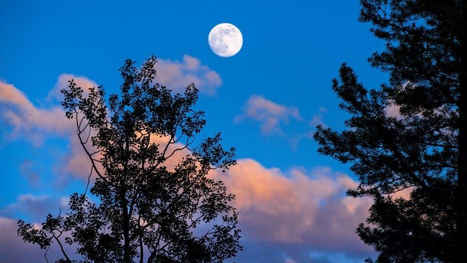 Por qu este s bado a la noche hay que salir a mirar la for Que luna hay esta noche